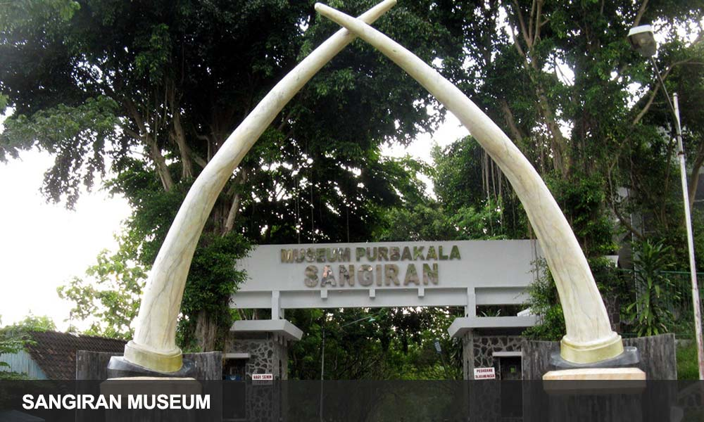 Sangiran Museum SANGIRAN is recognized by UNESCO scientists to be one of the most important sites in the world for studying fossil, ranking alongside Zhoukoudian (China).